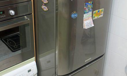 Entrevista a un frigorífico