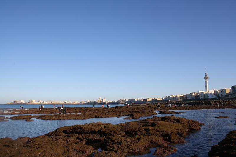 Mareas y actos Doceañistas en Cádiz