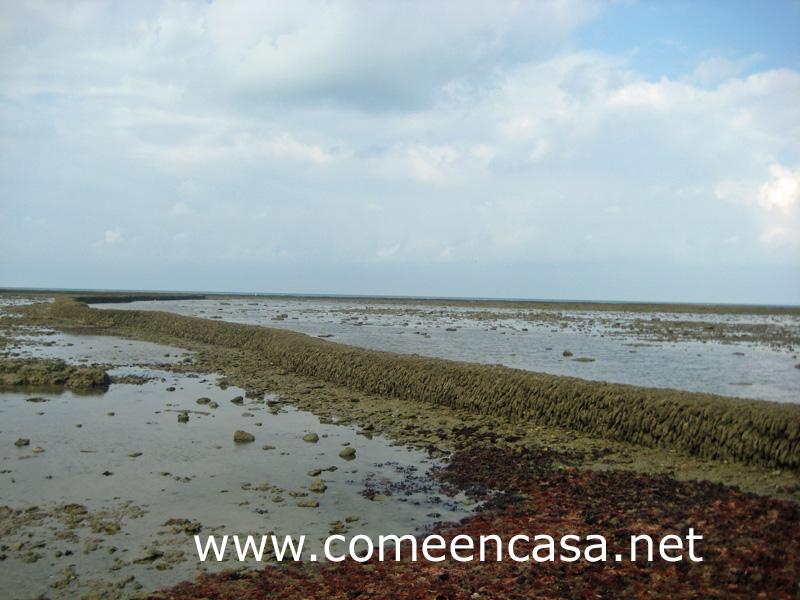 Blogueros en Rota – Los corrales de pesca