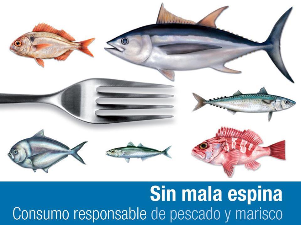 Hablemos de la pesca-I