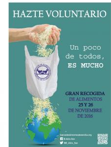 2016 GRA_cartel voluntarios_v00