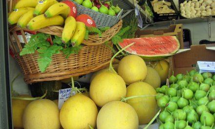 Las frutas, a examen