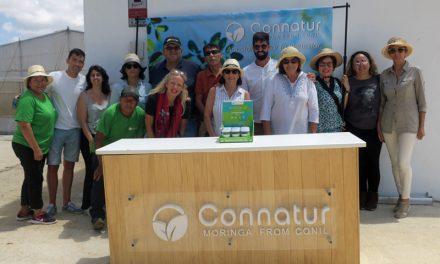 Moringa, salud y gastronomía en Cádiz