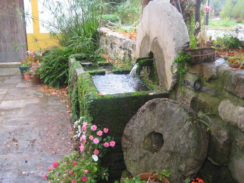 Visitas de comé a El Bosque (cádiz)