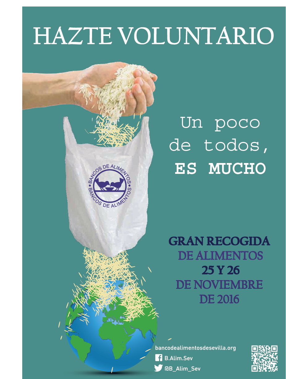 GRAN RECOGIDA DE ALIMENTOS 2016