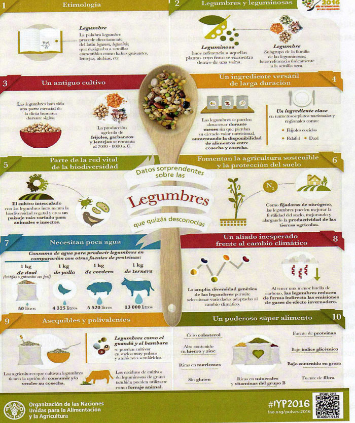 Trucos y secretos de las legumbres