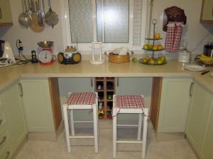 Bichitos en la cocina