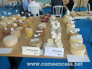 Catando quesos en Villamartín