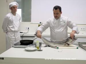 Cocina para novatos: CARNES, PESCADOS, VERDURAS