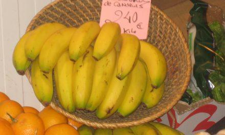 Monólogo del plátano… pero de Canarias