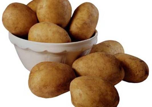 Aumenta la superficie sembrada de patata nueva