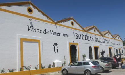 Bodegas Gallardo, en Vejer