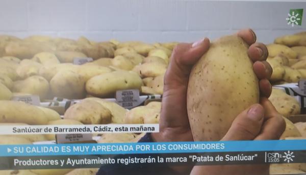 Las papas de Sanlúcar, marca registrada